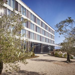 http://www.hotelmoderntimes.com/application/files/thumbnails/thumb_list_2x/9314/5855/7653/jardin_olivier.jpg